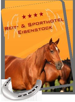 Reit- & Sporthotel Eibenstock English